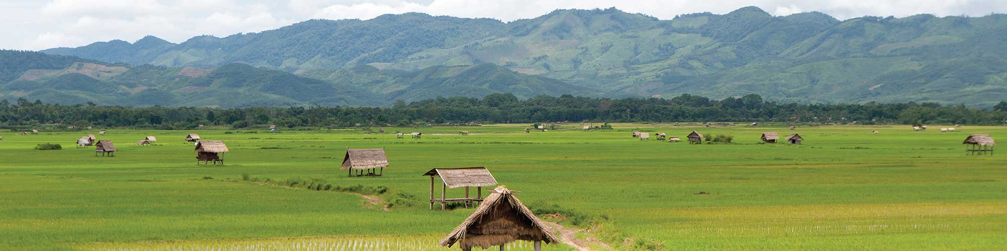 laos-banner-3.jpg