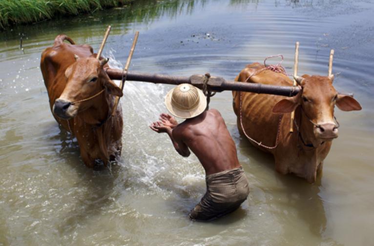 Myanmar Putao village visit